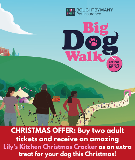 Big Dog Walk mobile image