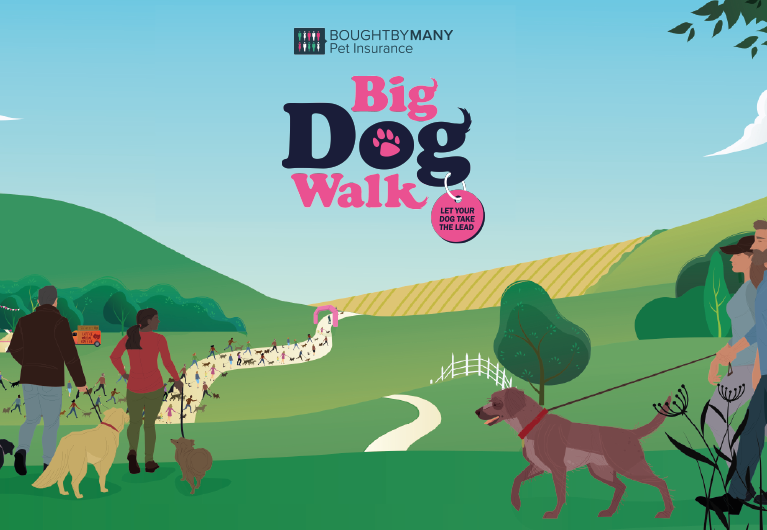 Big Dog Walk tablet image