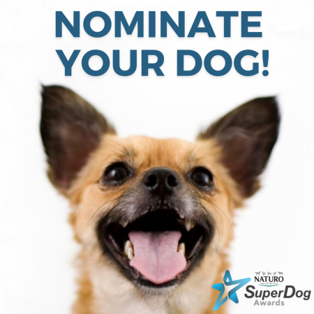 Nominate your Dog