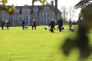 Loseley House 2